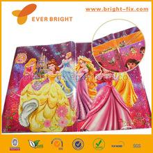 2013 Nice Carton design Laser plastic Book cover