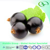 Natural Anthocyanin Series Blackcurrant Extract