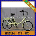 "2014 neu entwickelte Mutter fahrrad x-eb55 20"" 250w brushless motor baby tragen elektromotor für fahrrad mit li-ion akku"