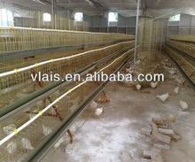 Atomatic Chicken Layer Cage Chicken House A type