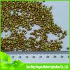 china raw sweet buckwheat