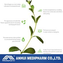 Stevia Extract Rebaudioside A 99%, Stevia.100% all natural.fine workmanship