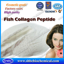 high purity collagen powder for drink