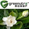 Cape Jasmine Extract Geniposide(10%-98%)
