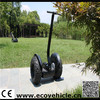 two wheels auto balance lion battery powered scooters for handicapped people