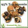High Quality Camellia extract 95% Tea saponin