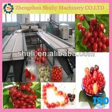 Strawberries and cherry sorting machine // fruit grading and sorting machine 0086-15838059105