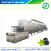 high-tech dehydration machine/vegetable drying machine/microwave drying machine