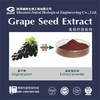 100% natural Polyphenol 40% 70% 90% Grape Seed Extract