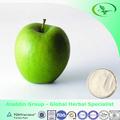 Maçã fd pó do fabricante do pbf, pode fornecer todos os tipos de pó de frutas