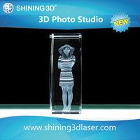 3D Laser Printer/ 3D Laser Crystal Photo