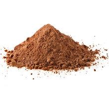 Ganoderma / Ganoderma Extract Powder