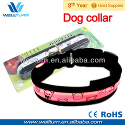 CE LED dog collar and leash