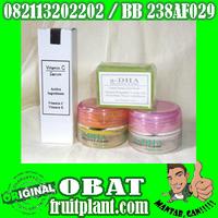 CREAM A-DHA ORIGINAL [082113202202] Pemutih Wajah 100%Herbal Non Mercuri