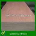 1220 * 2440 * 9 mm étanche contreplaqué pour meubles / WBP colle / okoumé bintangor popalr face ou mélamine stratifié
