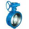Worm Gear Actuated Flange Concentric All Rubber Lined Butterfly Valve