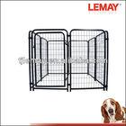5' x 5' x 4' powder coating black welded wire dog kennels