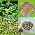 Verde del grano de café fabricante
