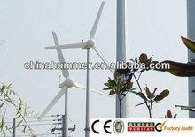 green energy fam wind power 3000W electricity generator
