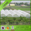 Crops protection anti insect netting for greenhouse