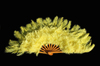 large decorative feather fan for sale