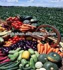 chicken manure compost NPK bio organic fertilizer
