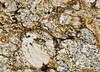 natural Honey Yellow granite