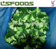 Perfect New season IQF frozen broccoli