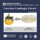 100%natural organic garcinia cambogia seed