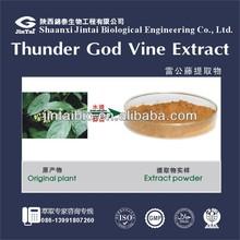 high quality 4:1 10:1 20:1 powdered tripterygium wilfordii