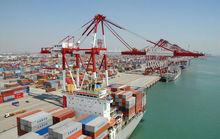 Cheap International ocean freight from shenzhen/HongKong China to Bandar abbas--Frances