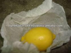 Fresh Verna Lemon