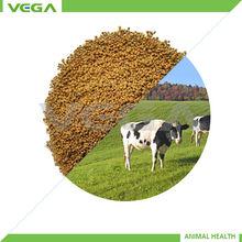 growth promoter feed additive probiotic ACTIVE THREE(Clostridium butyricum,bacillus licheniformis and bacillus subtilis)