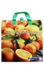 PP Woven Shopping Bags shape foldable shopping export worldwide