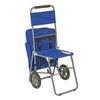 3-in-1 Shopping Cart