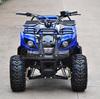 Hot Selling Best Price Electrical ATV mini motorbike