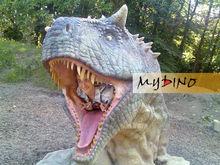 My Dino-Lifesize dinosaur for artificial fiberglass artistic head