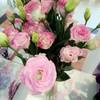 fresh flower of eustoma