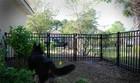dog kennel wholesale (BSD-G1)