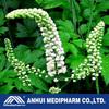 Black cohosh extract, 2.5%~5% Triterpene glycosides,superior quality, Black cohosh extract