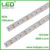 High Quality 5630 120leds/m flexible strip led pure white IP20/IP65