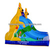 Outdoor Big Water Slide Inflatable
