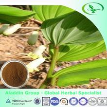 Polygonatum odoratum (Mill.)Druce Extract 10:1
