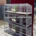 comercial gaiola do coelho na fazenda de aves