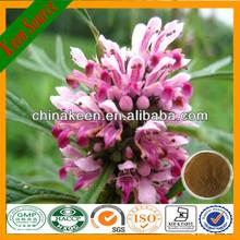 Motherwort Herb P.e./Motherwort Extract/leonurus Cardiaca Extract