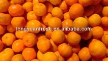 fresh lokam, fresh mandarin