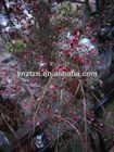 artificial flower stem arangement flower crafts