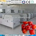 Azufaifo pit máquina / cherry pit eliminar machine / oliva pit máquina de extracción con buena calidad