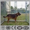 Canada Galvanized chain link dog run