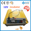 avançada de alta tecnologia aplicada inteligente controlador de temperatura para incubadora de pato